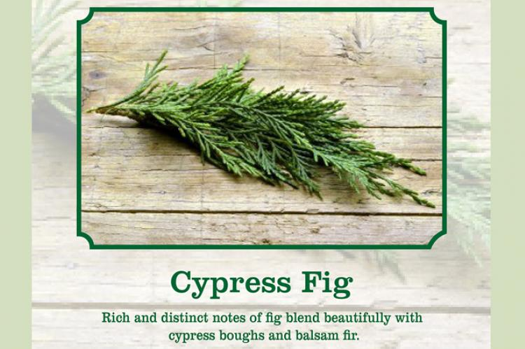 cypress fig scent